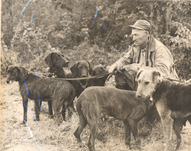 Henry Vaughn 'Von' Plott with Plott Hounds. Haywood County Public Library.