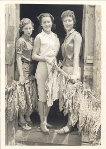Peggy Altman and Judy Elliott taking out a barn of tobacco