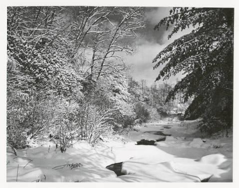 Snowy_Scene_by_Palmer_Blair