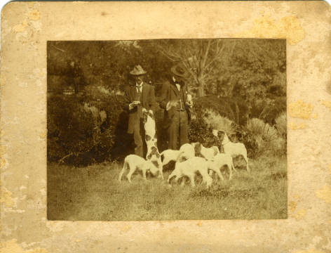 Cooleemee_Plantation_Hunting_Dogs