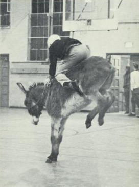 From the Granville County Yearbooks: Donkey Basketball