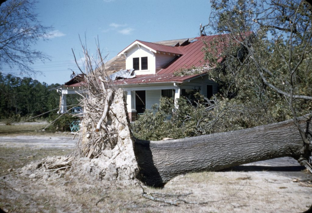 Hurricane Hazel Photographs From Braswell Memorial Library Now Online