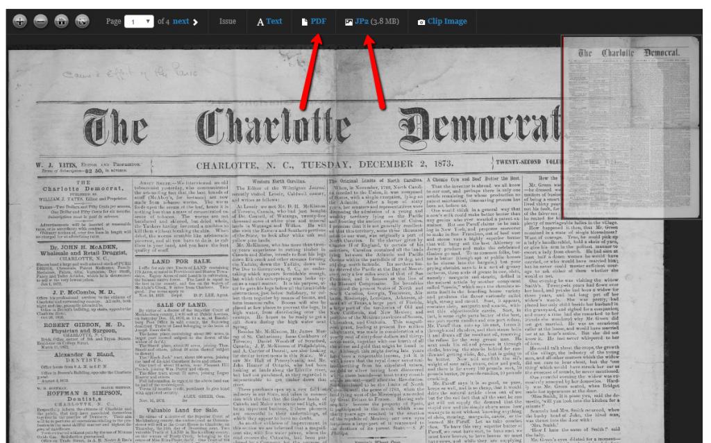 Screenshot of the Charlotte Democrat 1873-12-02