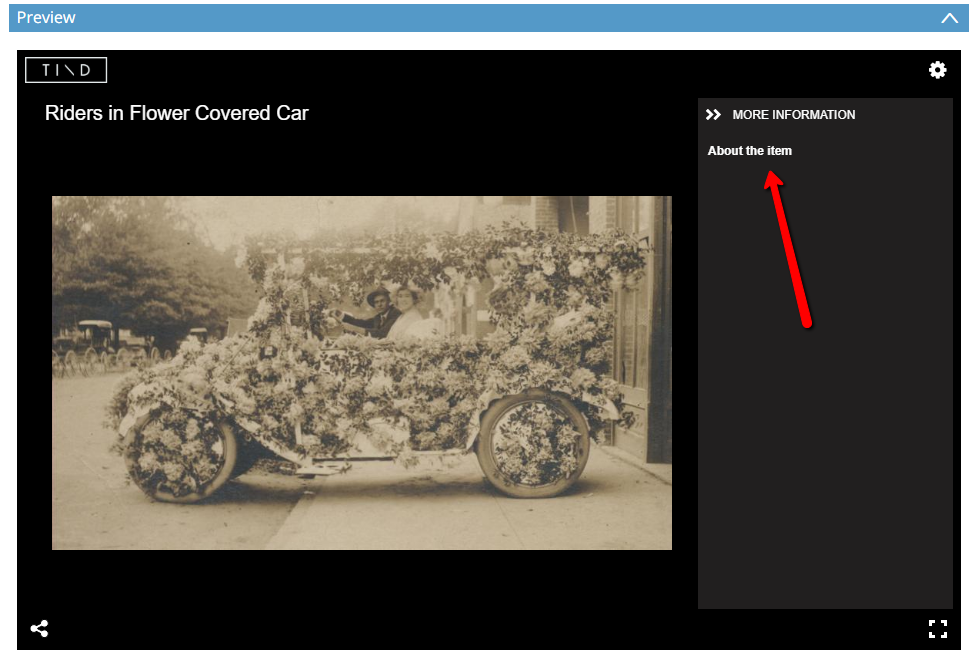 Screenshot of a photograph in the item viewer with the more information panel open