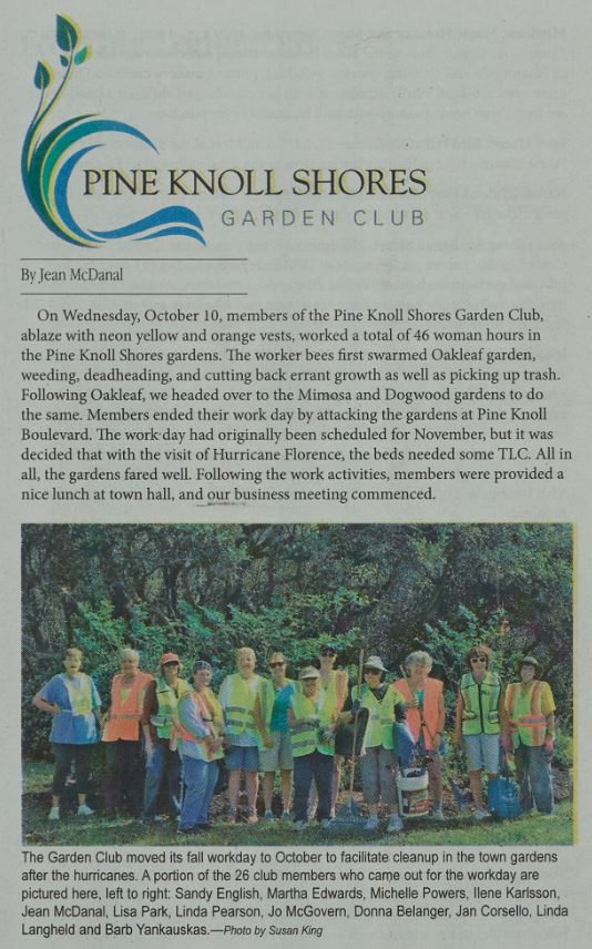 Pine Knoll Shores Garden Club cleanup, November 2018
