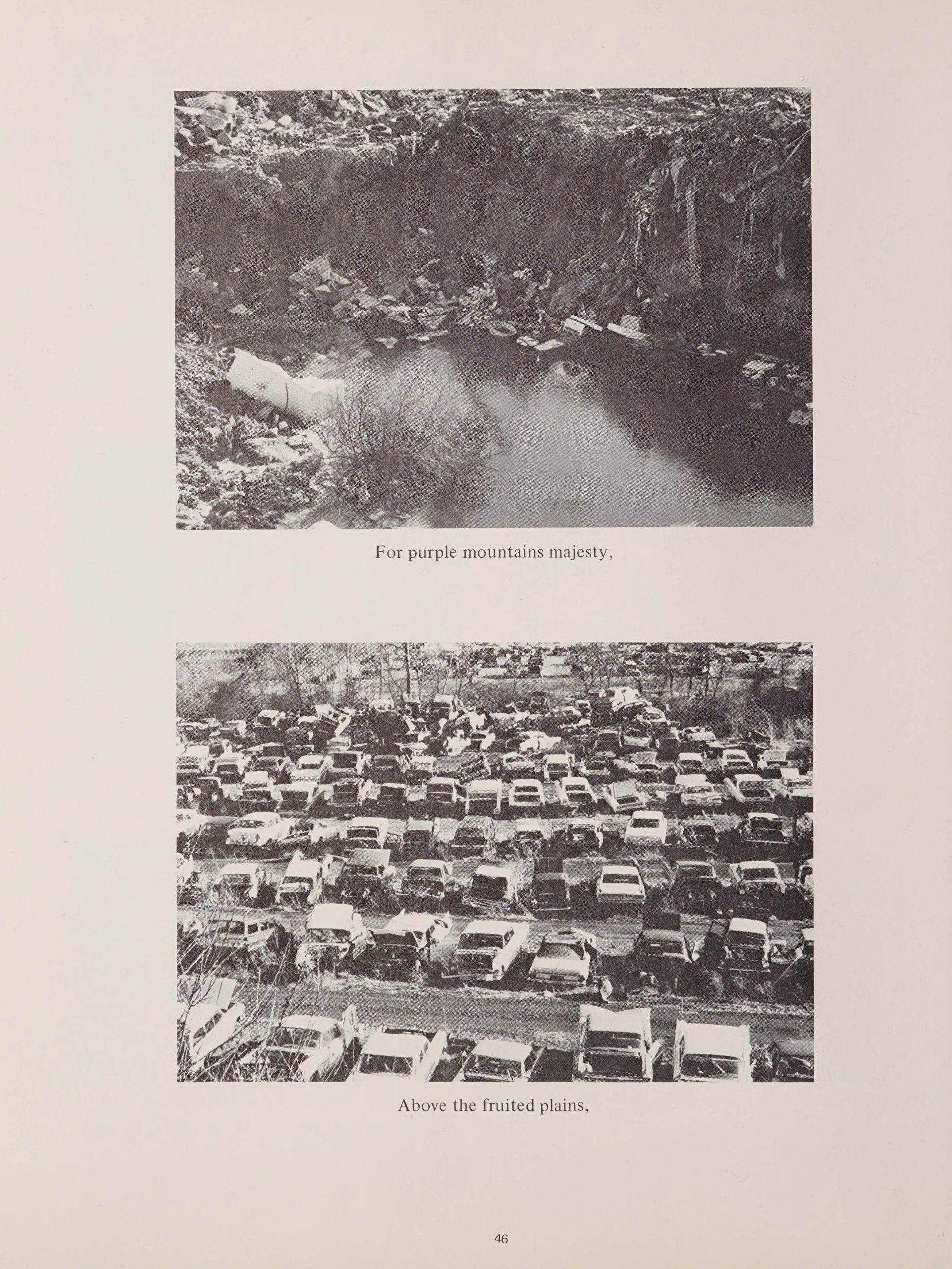 """Two pictures on top of each other. The first one's caption is """"For purple mountains majesty."""" The image itself is of a small pond with pollution. The bottom picture is of a lot with several rows of broken cars. The caption for the second photo is """"Above the fruited plains."""""""